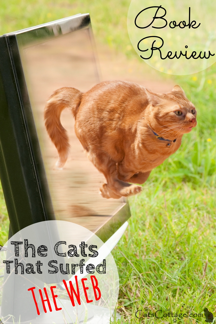 The Cats That Surfed The Web Book Review