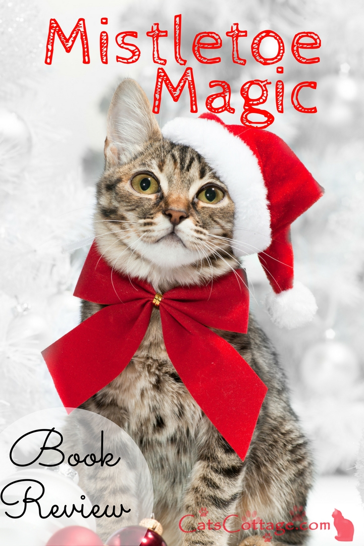a christmas cat book for the ladies - Christmas Names For Cats