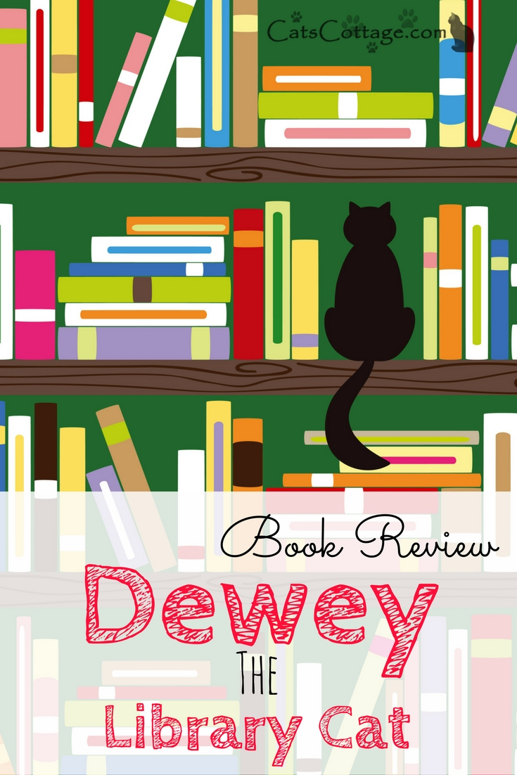Dewey The Library Cat Book Review