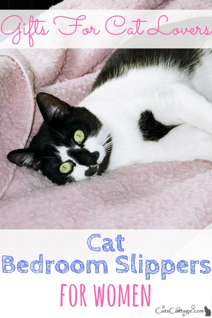 Cat Bedroom Slippers For Women