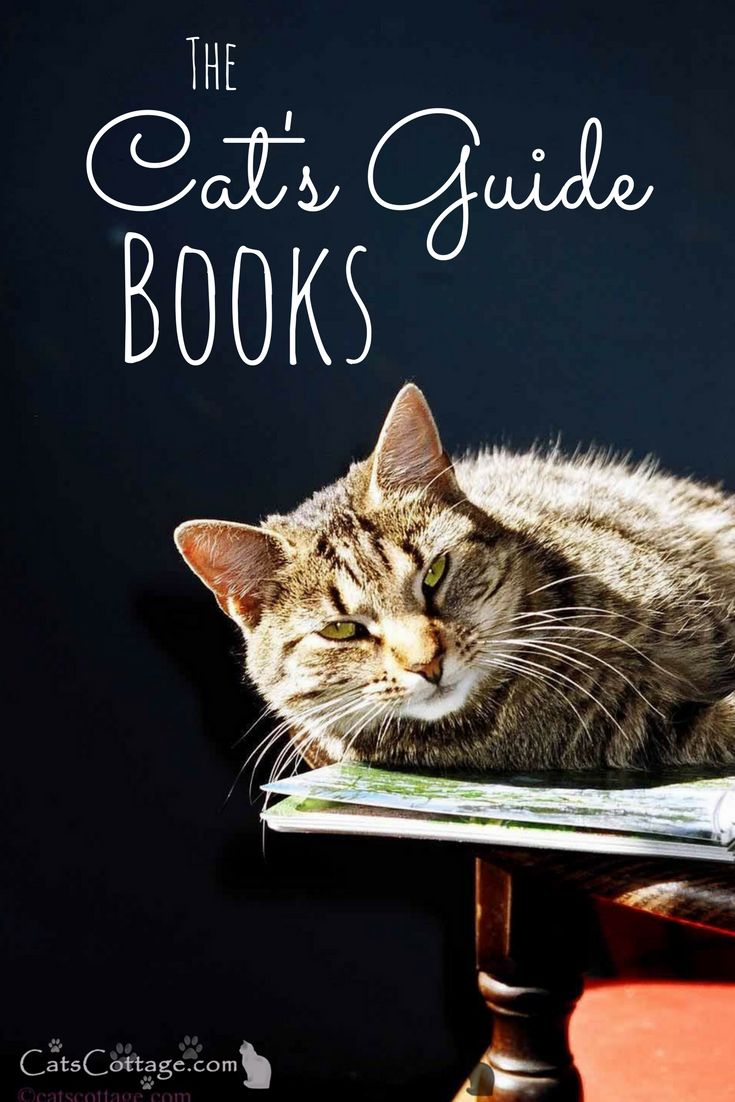 The Cat's Guide Books by Debby Rodgers